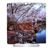 Dreamscape Shower Curtain