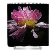 Dreamy #03 Shower Curtain
