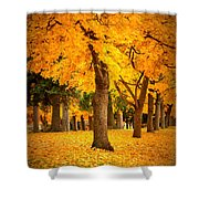 Dreamy Autumn Day Shower Curtain