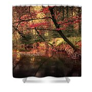Dreamy Autumn Forest Shower Curtain