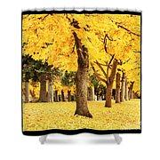 Dreamy Autumn Gold Shower Curtain