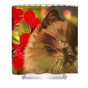 Dreamy Cat With Geranium 2015 Shower Curtain