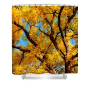 Dreamy Crisp Autumn Day Shower Curtain