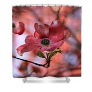 Dreamy Dogwood Shower Curtain