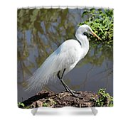 Dreamy Great Egret Shower Curtain
