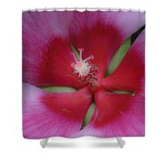 Dreamy Hibiscus Shower Curtain