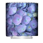 Dreamy Hydrangea In Purple And Blue  Shower Curtain