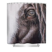 Dreamy  Listowel Fair Shower Curtain