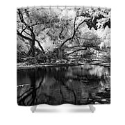 Dreamy Morning Shower Curtain