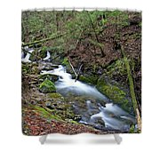 Dreamy Passage Shower Curtain