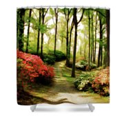 Dreamy Path Shower Curtain