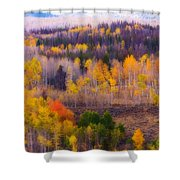 Dreamy Rocky Mountain Autumn View Shower Curtain