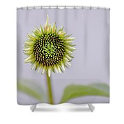 Dreamy Sunny Shower Curtain
