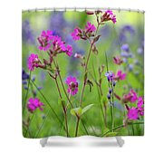 Dreamy Wildflowers Shower Curtain