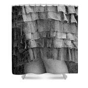 Dress #4538 Shower Curtain