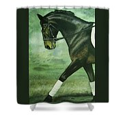 Dressage Horse Caper Shower Curtain