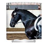 Dressage Horse Show Shower Curtain