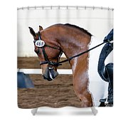 Dressage Show Horse Shower Curtain