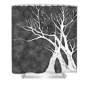 Dressed In Winter White Shower Curtain