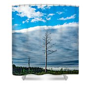 Drew County Bonanza Shower Curtain