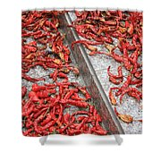 Dried Chili Peppers Shower Curtain
