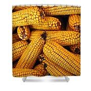 Dried Corn Cobs Shower Curtain