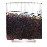 Dried Fence Shower Curtain