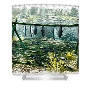 Dried Fish Shower Curtain