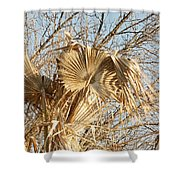 Dried Palm Fronds In The Wind Shower Curtain