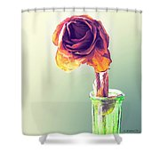 Dried Rose Shower Curtain