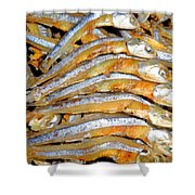 Dried Small Fish 3 Shower Curtain