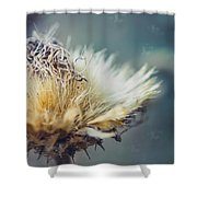Dried Thistle Shower Curtain