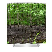 Dried Up  Pond Shower Curtain