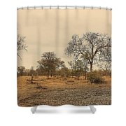 Dried Up Watering Hole Shower Curtain