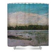 Drifting Downstream Shower Curtain