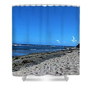 Drifting On The Beach In Dominican Republic  Shower Curtain