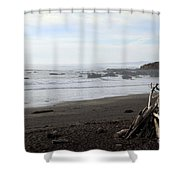 Driftwood And Moonstone Beach Shower Curtain
