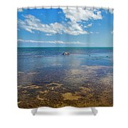 Driftwood At Low Tide In Key West Shower Curtain