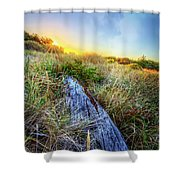 Driftwood At The Dunes Shower Curtain