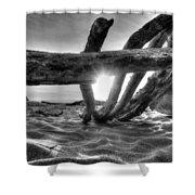 Driftwood B/w Shower Curtain