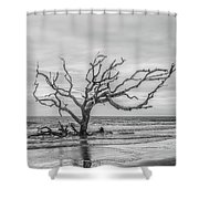 Still Standing In Black And White Shower Curtain