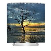Driftwood Beach Sunrise Jekyll Island Georgia Shower Curtain