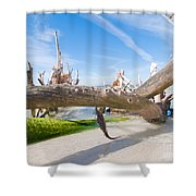 Driftwood C141351 Shower Curtain