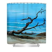 Driftwood Shower Curtain