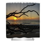 Driftwood Dawn Shower Curtain