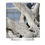 Driftwood Detail Shower Curtain