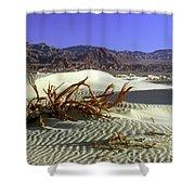 Driftwood Dune Shower Curtain