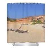Driftwood On Boca Keto's Secluded Beach Shower Curtain