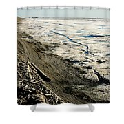 Driftwood On The Frozen Arctic Coast Shower Curtain