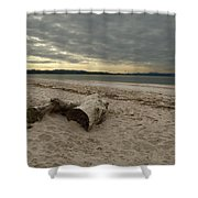 Driftwood On West Sands Shower Curtain